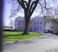 The White House, Washington DC by zapatam