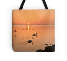 Sunrise Fly by  Tote Bag