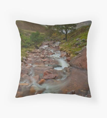 Scale Force Throw Pillow