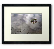 Flooded Plains!  Framed Print
