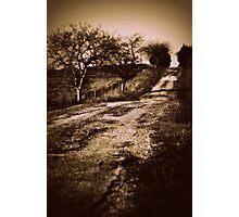 asphalt Photographic Print
