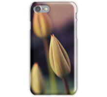Spring Beginning iPhone Case/Skin