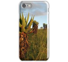 marching up the hill iPhone Case/Skin