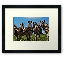 whoops!  wrong way! Framed Print
