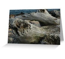 Natural History 2 Greeting Card