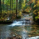 Autumn Splash by Jeff Palm Photography