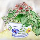 Potted Plant from Joe and Linda by Anne Gitto