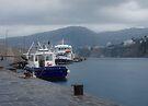 Sorrento Harbor by Lucinda Walter
