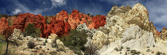 Red Rock Canyon by James Eddy