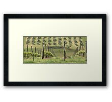 Hillside Harvest Framed Print