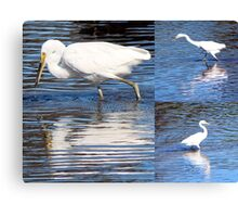 Collage of White Egrets in the Lake Canvas Print