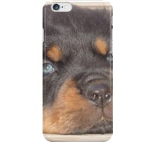 Adorable Rottweiler Puppy With Blue Eyes iPhone Case/Skin