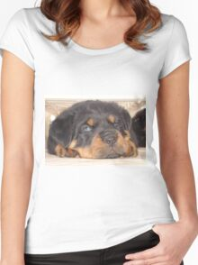 Adorable Rottweiler Puppy With Blue Eyes Women's Fitted Scoop T-Shirt