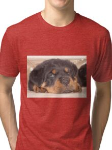 Adorable Rottweiler Puppy With Blue Eyes Tri-blend T-Shirt