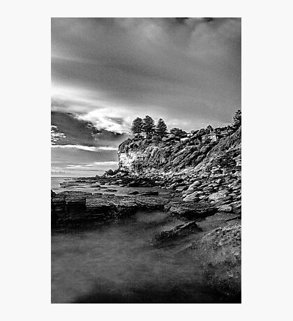 Pine Trees ontop of the cliffs HDR Photographic Print