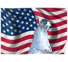 I love America Poster