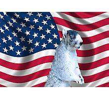 I love America Photographic Print