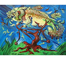 Fish on a Bicycle in a Tree Photographic Print