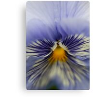 She flashed me Canvas Print