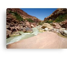 Wadi Zered (Wadi Hassa or Hasa) in western Jordan. Canvas Print