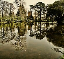 Luscombe Pond by Country  Pursuits