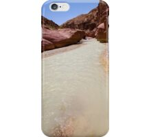 Wadi Zered (Wadi Hassa or Hasa) in western Jordan iPhone Case/Skin