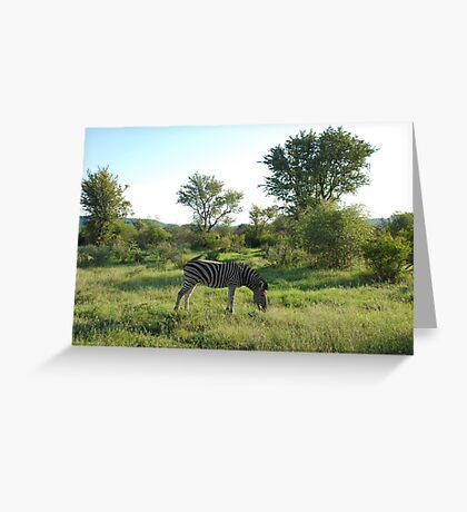 grazing Greeting Card