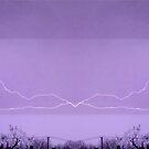 March 19 & 20 2012 Lightning Art 13 by dge357
