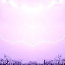 March 19 & 20 2012 Lightning Art 14 by dge357