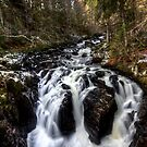 Black Linn Falls by Roddy Atkinson