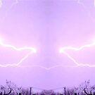 March 19 & 20 2012 Lightning Art 23 by dge357