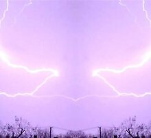 March 19 & 20 2012 Lightning Art 23 by dge357