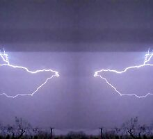 March 19 & 20 2012 Lightning Art 25 by dge357
