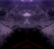 March 19 & 20 2012 Lightning Art 43 by dge357