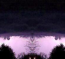 March 19 & 20 2012 Lightning Art 54 by dge357