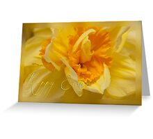 Easter card - daffodil Greeting Card