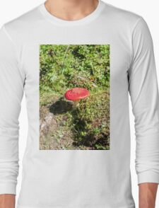 Classic red and white potted toadstool. Fly agaric or Fly amanita (Amanita muscaria) Long Sleeve T-Shirt