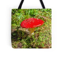Classic red and white potted toadstool. Fly agaric or Fly amanita (Amanita muscaria) Tote Bag