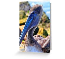 Pelican on the Jetty Greeting Card