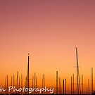 Masts at Dawn by David  Pemberton