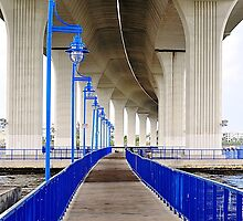 Trail Under the Bridge by joevoz