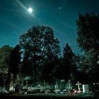 Fangelsbachfriedhof by wulfman65