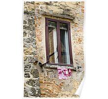 pink washing Poster