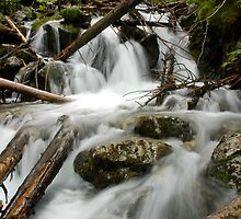 Waterfall detail in the forest of Slovakia by Magdalena Warmuz-Dent