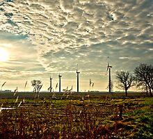 Windmills in Backlight by wulfman65