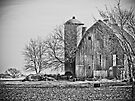 Beautiful old Wisconsin Barn by Marcia Rubin