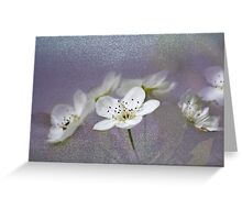 Pear Blossoms in the Garden Greeting Card