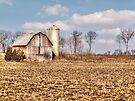 Wisconsin Barn by Marcia Rubin