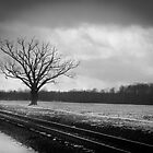 Rural Winter Railroad Tracks by Marcia Rubin