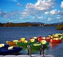 Kayak Row by barkeypf